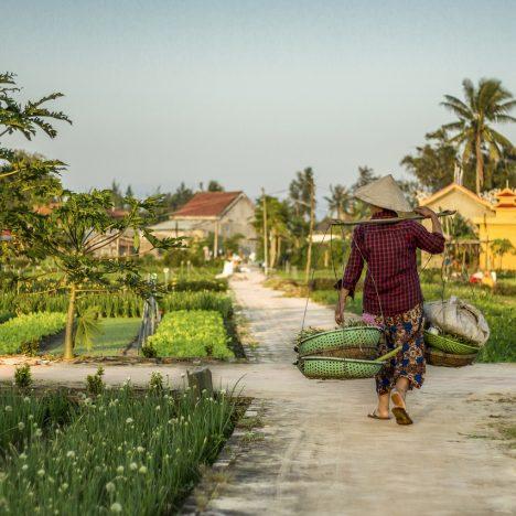 Partir au Sri Lanka: les formalités administratives nécessaires